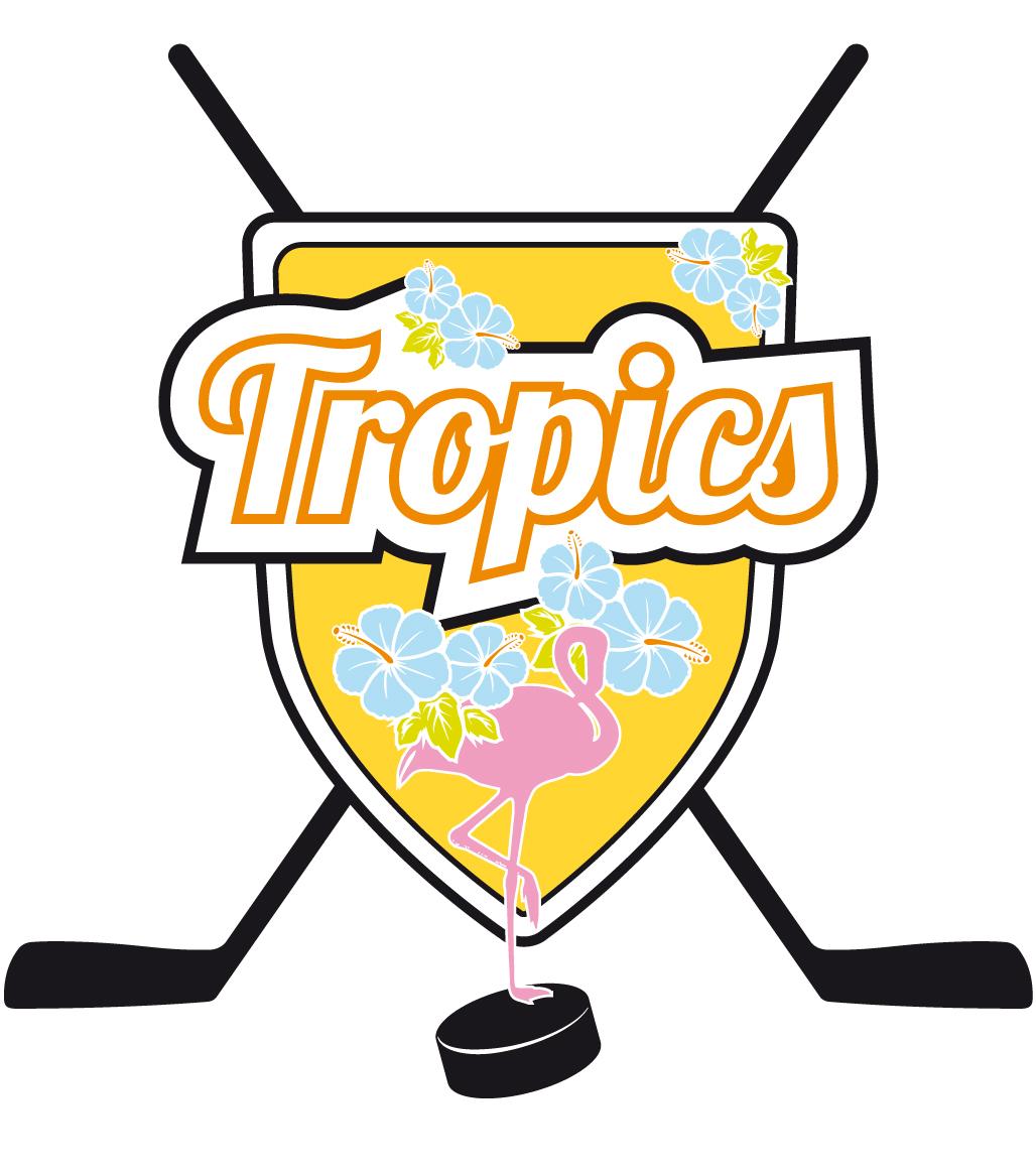 Logo Eishockey Verein Gesa Siebert Kommunikationsdesign