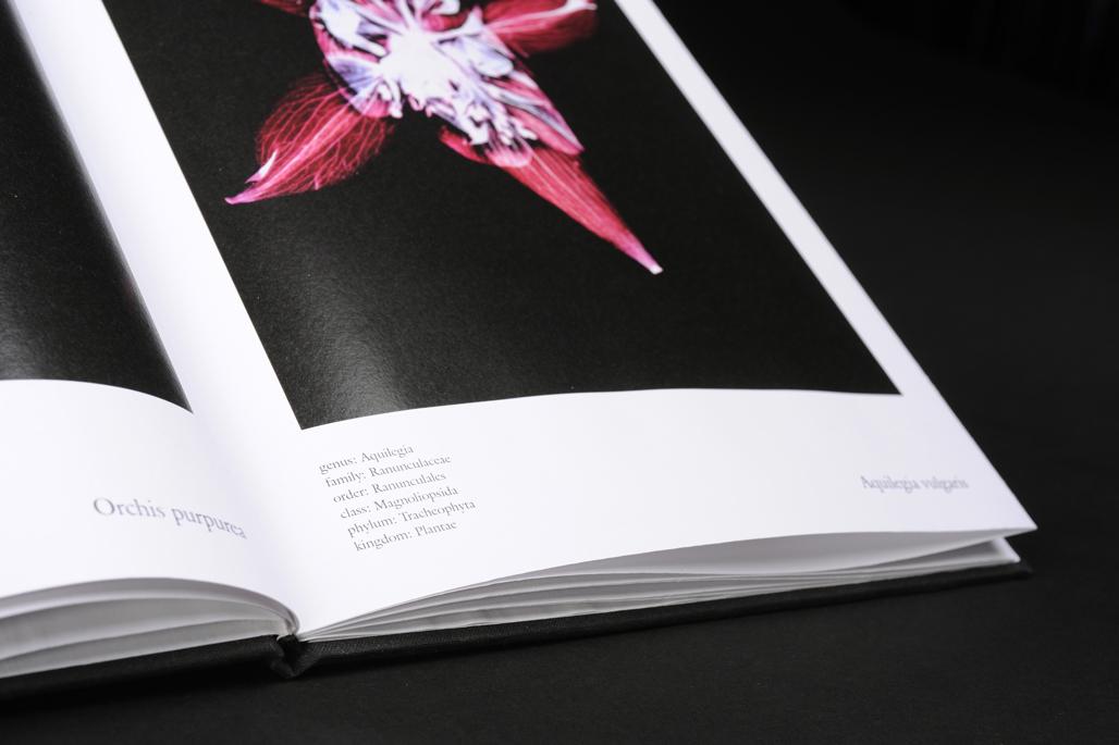 floris Fotografie Buch Detail Gesa Siebert Kommunikationsdesign