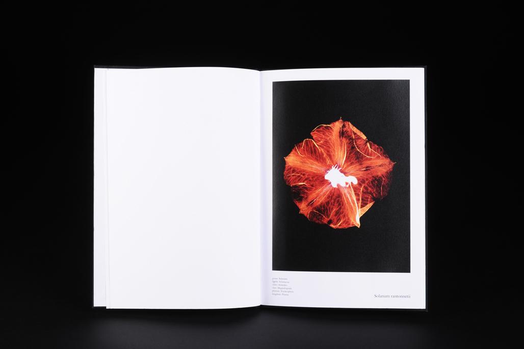 floris Fotografie Buch Innen Gesa Siebert Kommunikationsdesign